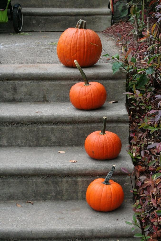 pumpkin-1170272_1280